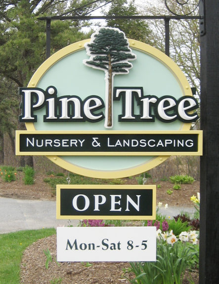 pinetree1a