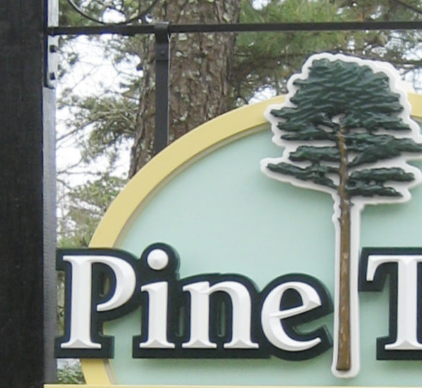 pinetree1aa